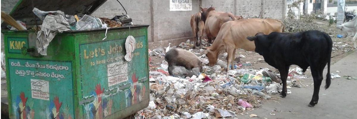 Complaints on poor sanitation unaddressed in Kakinada