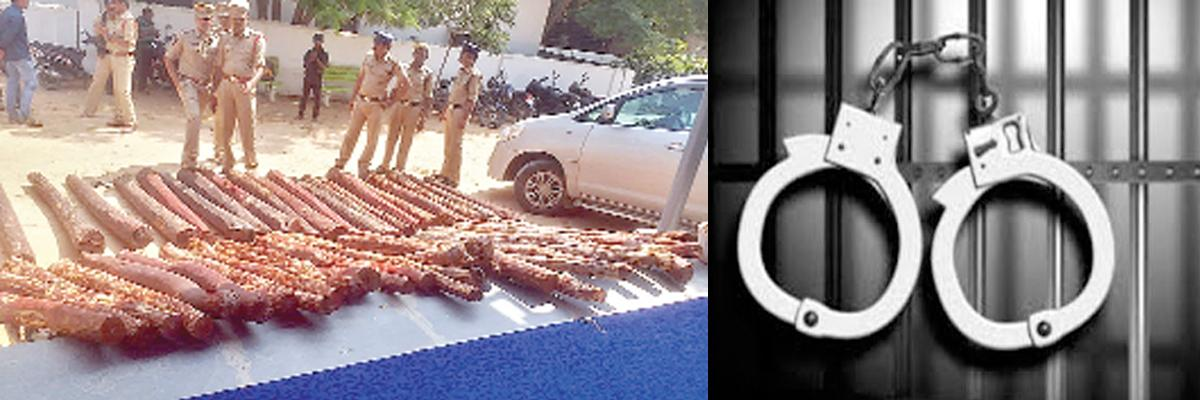 16 smugglers held; logs worth 1 cr seized