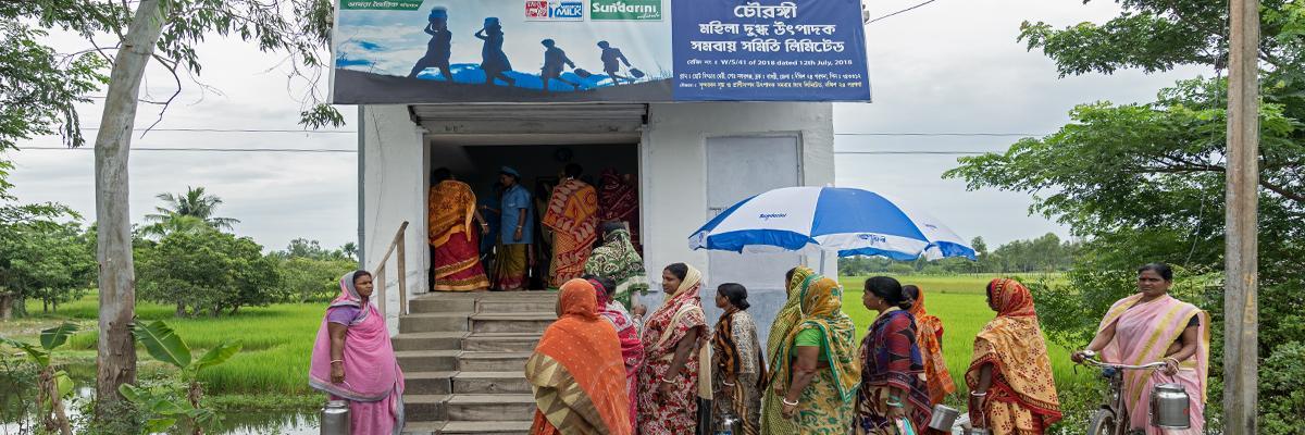 Sundarbans women show the way