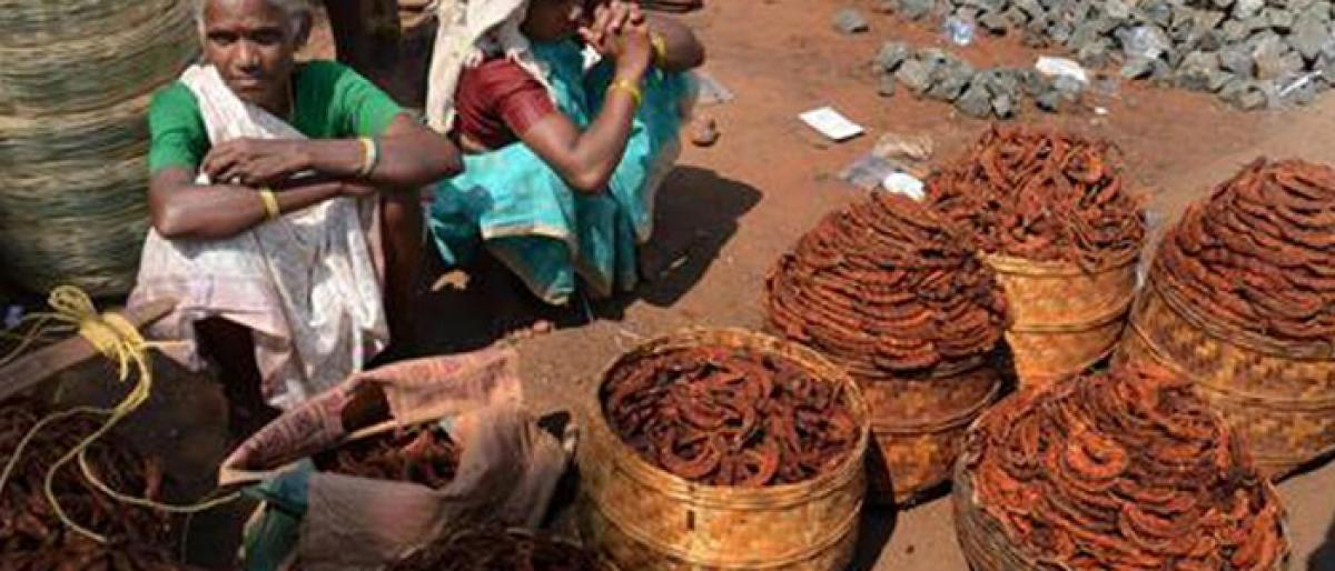 Tribals dispose of tamarind for a song