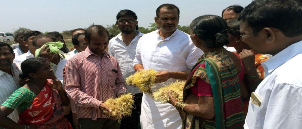 Komatireddy demands compensation to rain-hit farmers