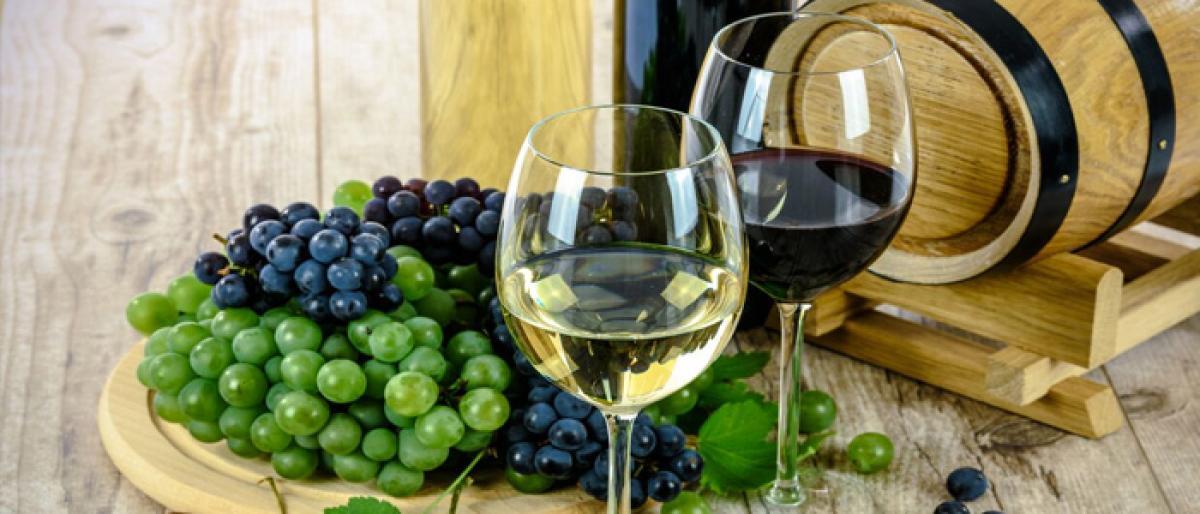 A celebration called wine
