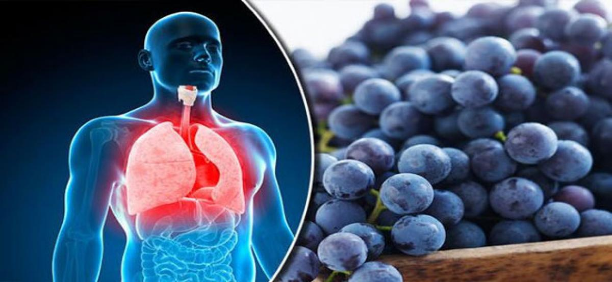 Antioxidant treatment can help lung disease patients: Study