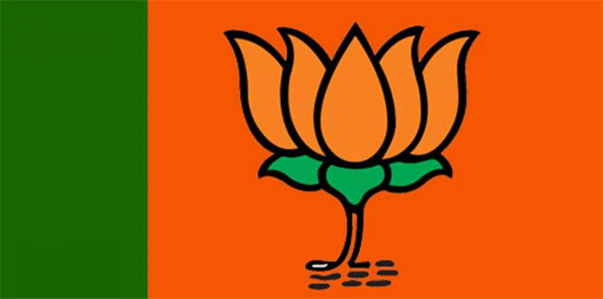 BJP members try to defend Centre