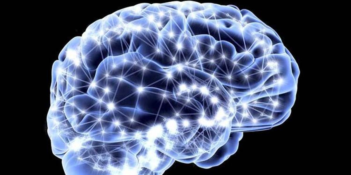Advanced brain simulator to help understand neurological disorders