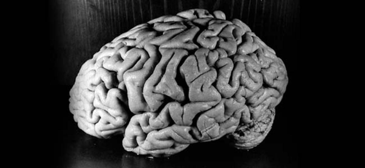 INTERESTING FACTS! How to boost brain power