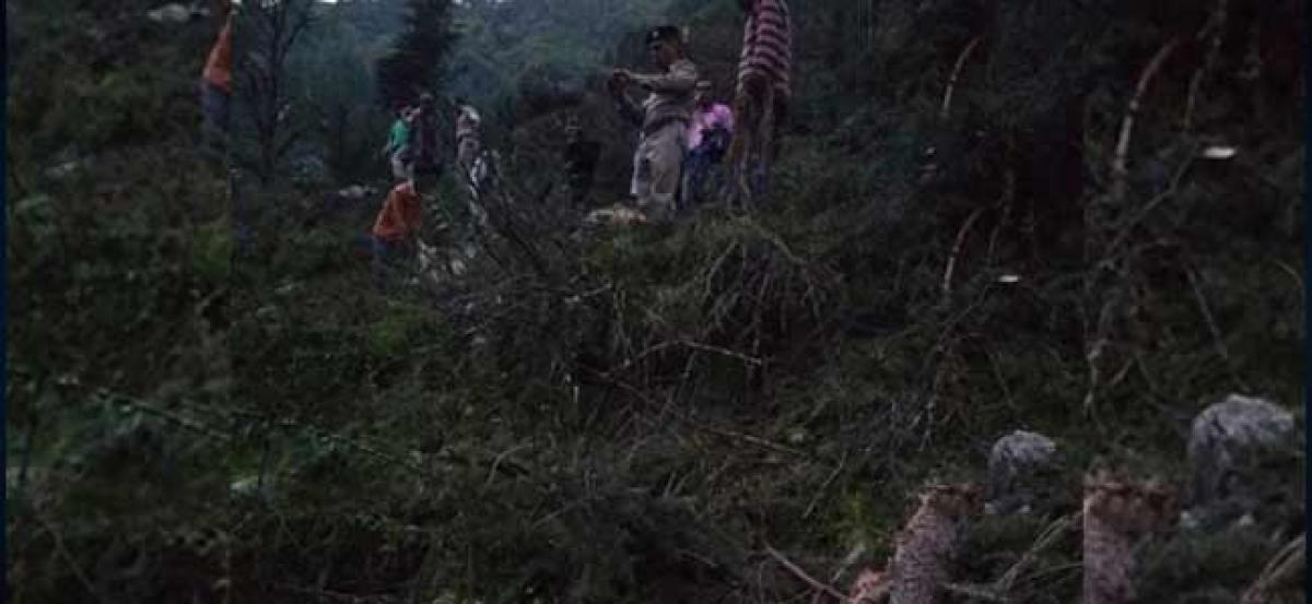 Man, 116 cattle killed after portion of hill collapsed in Himachal