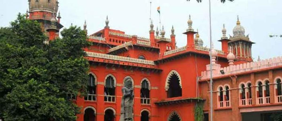 Woman appeals to Madras HC alleging land grab by TN minister