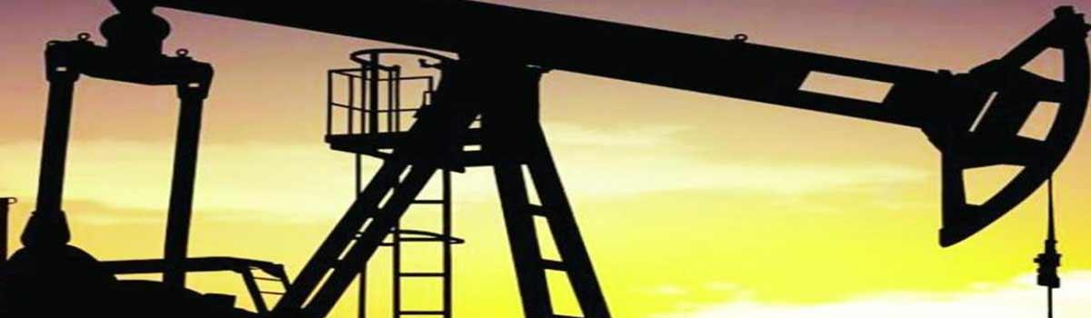 Oil plunges nearly 8 per cent despite talk of output cut