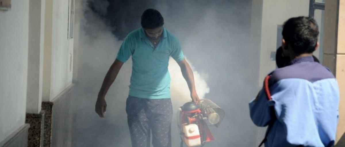 Take steps to check dengue, officials told