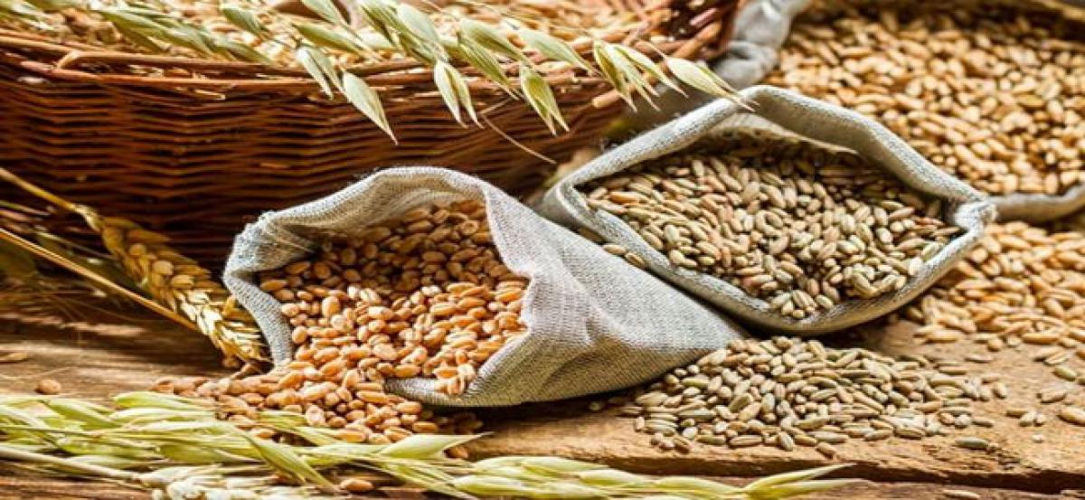 Disruptions in shifting grains from purchase centres