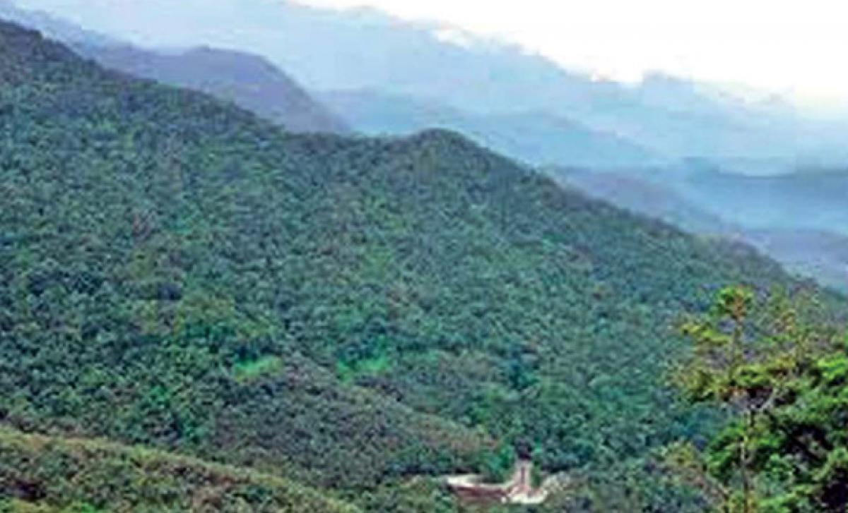 AP tops in EPI for best green practices