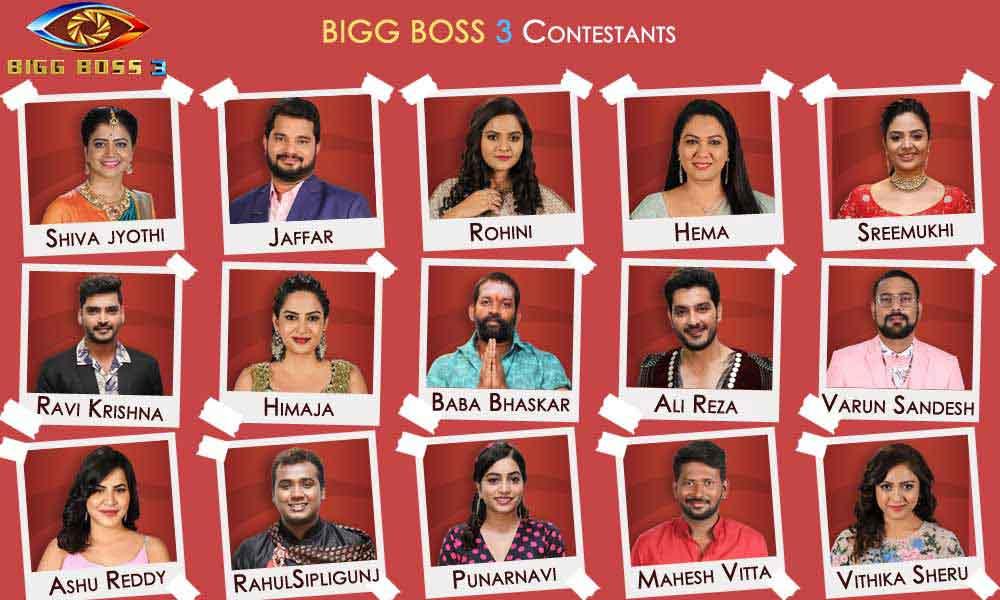 Bigg Boss Telugu Season 3: 15 Contestants and their profiles