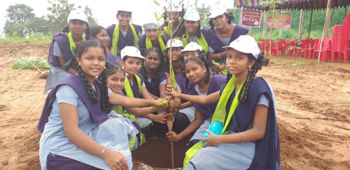 ZPHS students take part in Haritha Haram at Kothagudem