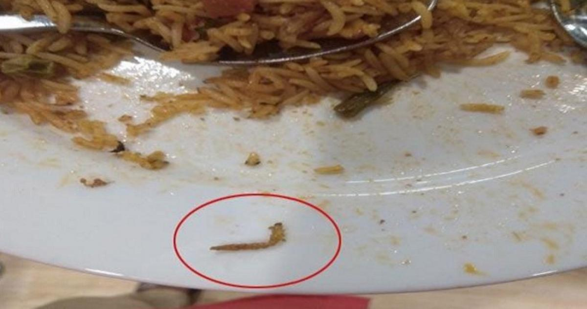 Insect Found In Biryani at IKEA restaurant