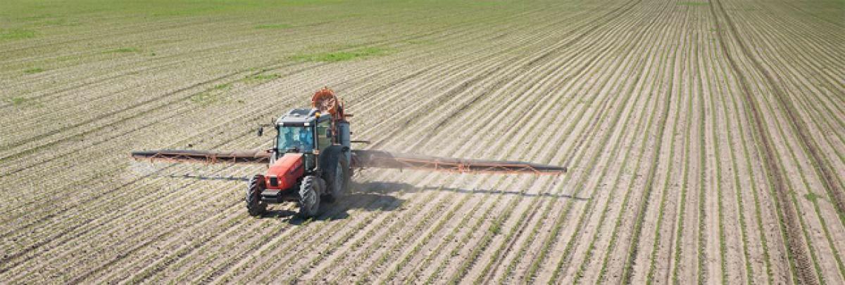 Industrial agriculture destroying livelihoods