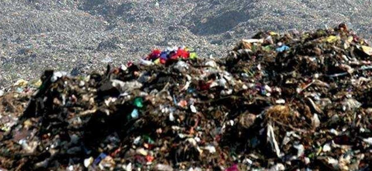 Bulk garbage generators asked to install compost machines