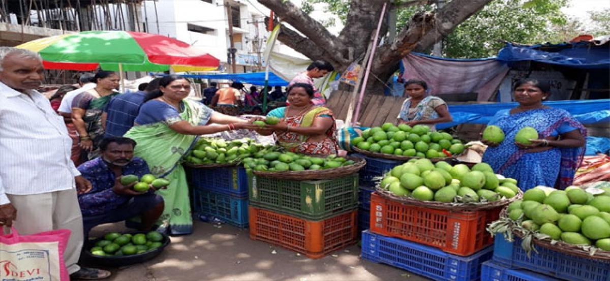 Kushaiguda brims with raw mangoes