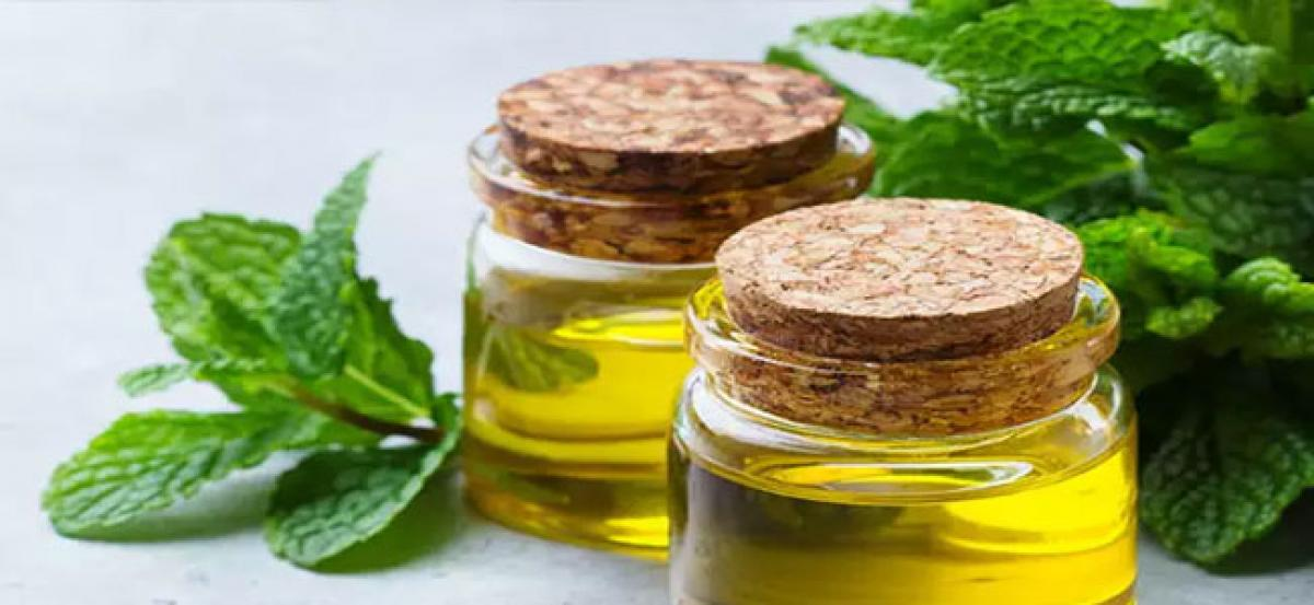 Mentha oil futures drop 0.92% on ample stocks
