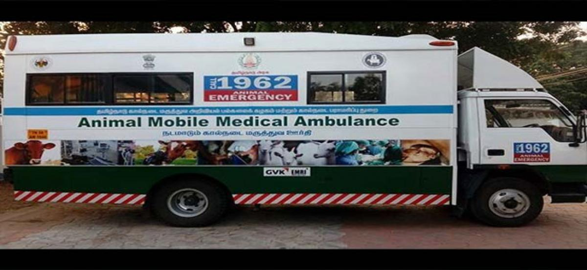 Mobile veterinary clinics a hit in villages