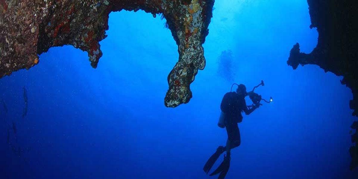 Explore the ocean depths