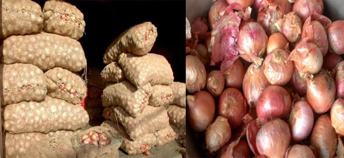 Onion becomes dearer