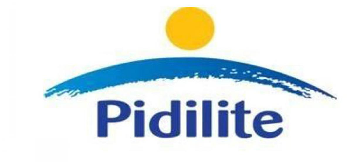 Pidilite strengthens international presence; unveils adhesive manufacturing plant in Srilanka