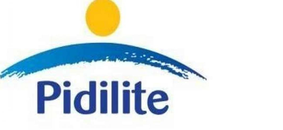 Pidilite announces acquisition of majority stake in Cipy Polyurethanes