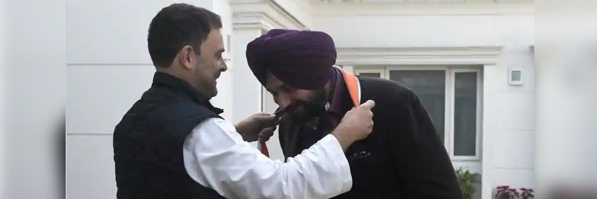 'Rahul bhai' will hoist tricolour at Red Fort in near future: Navjot Sidhu