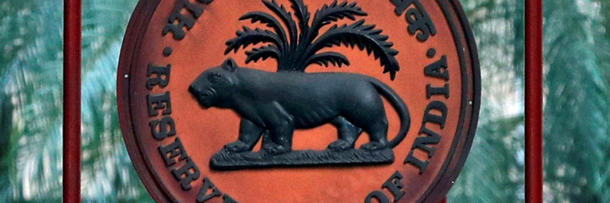 RBI to set up expert panel to examine its economic capital framework