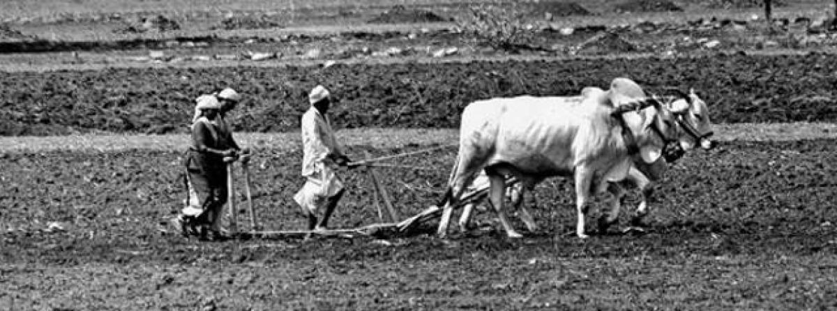 Budget disappointed farmers: AP Rythu Sangam
