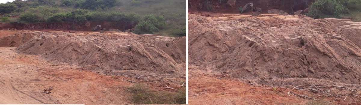 Illegal sand mining rampant along sea coast