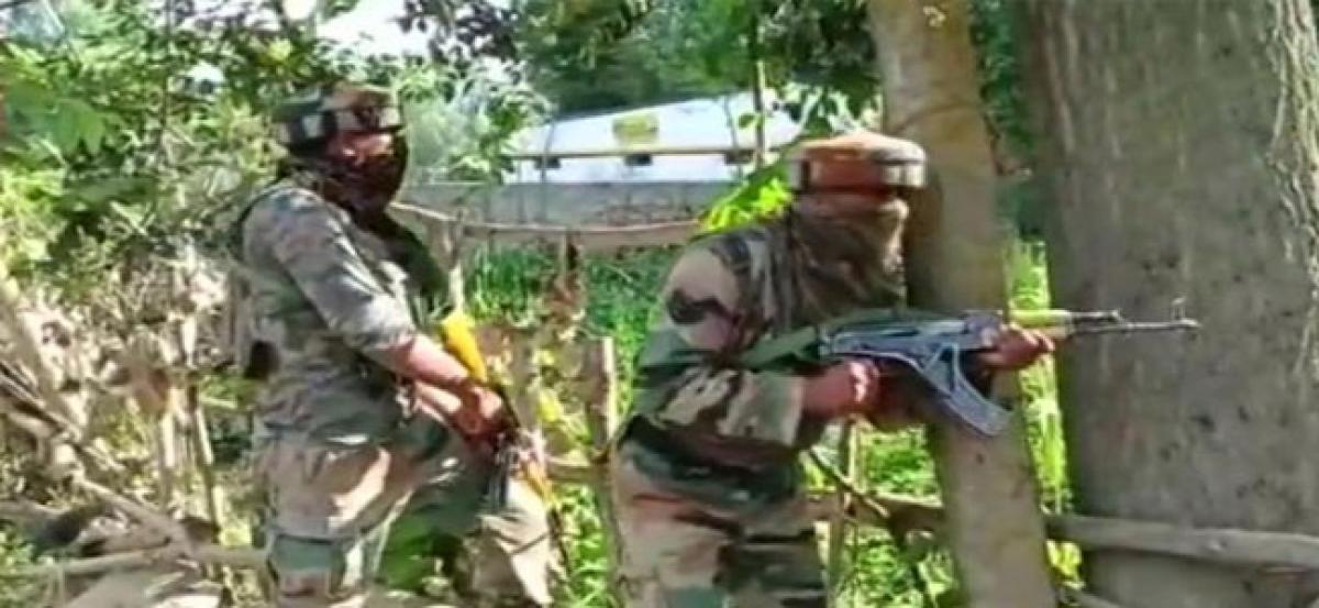 Security forces gun down one militant in J&K