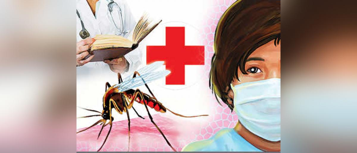 Swine Flu Outbreaks In Chittoor