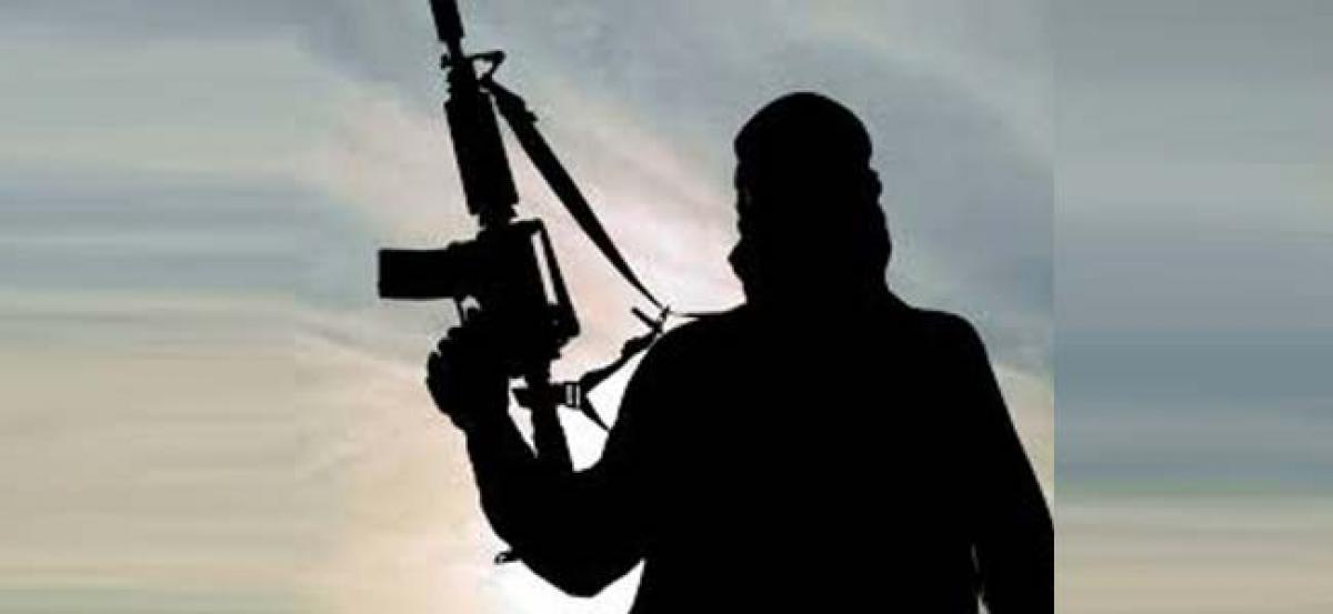 J-K: Terrorist killed after failed weapon-snatching bid